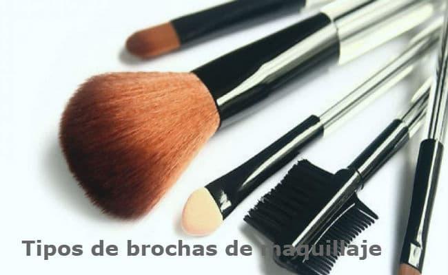 aefac281b ▷ Brochas de Maquillaje Guía de compra parar tu propio kit